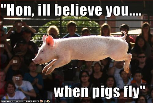Hon Ill Believe You When Pigs Fly Cheezburger Funny Memes