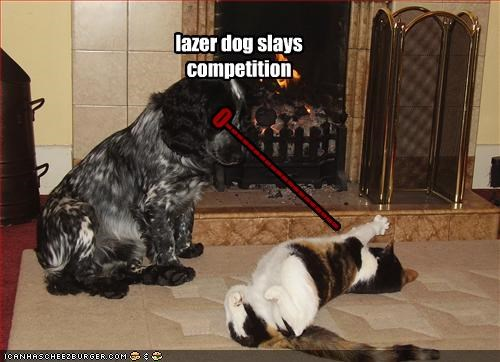 0-------------------- lazer dog slays competition