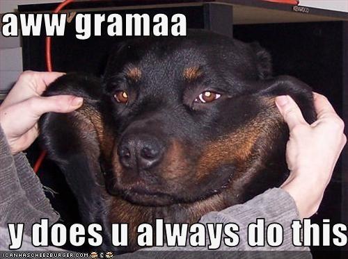 cheeks face grandma pinch rottweiler