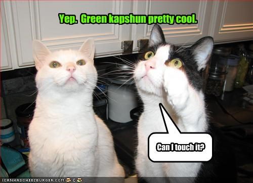 Yep. Green kapshun pretty cool. Can I touch it?