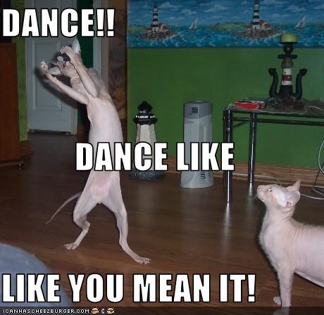 Dance like u mean it