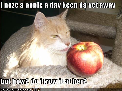 apple vet - 2043361536