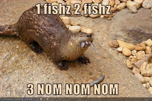 1 fishz 2 fishz   3 NOM NOM NOM