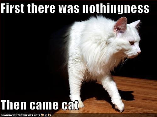 ceiling cat darkness world domination - 2046187776