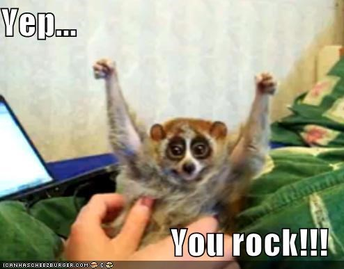 Yep You Rock Cheezburger Funny Memes Funny Pictures