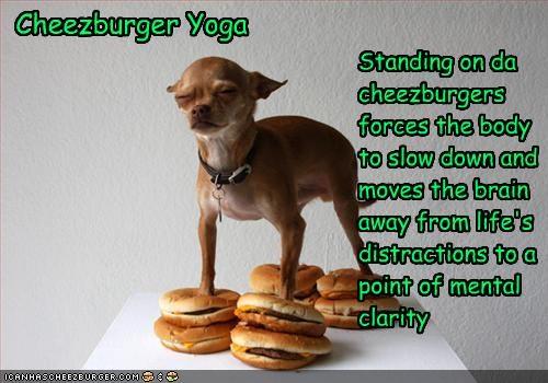 Cheezburger Image 2047867136