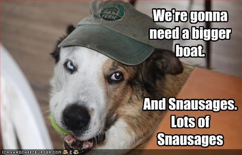 australian shepherd,boat,food,hat,jaws,movies,snausages,treats