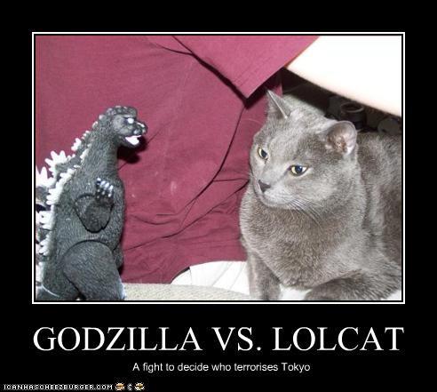 GODZILLA VS. LOLCAT A fight to decide who terrorises Tokyo