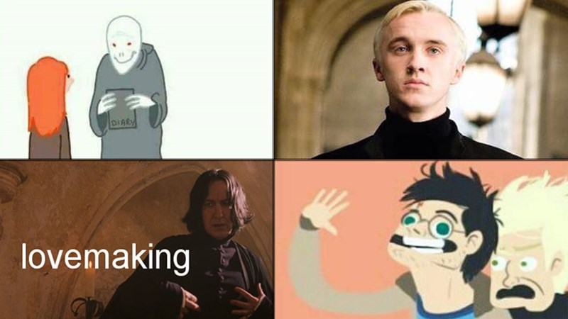 comics and memes from the Harry Potter book and movie series