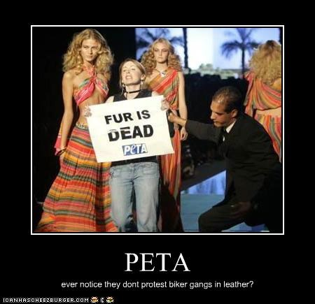 PETA ever notice they dont protest biker gangs in leather?