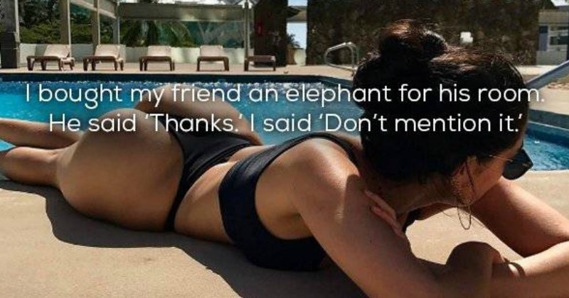 Funny jokes of lame puns captioned over pics of hot girls in swimsuits.
