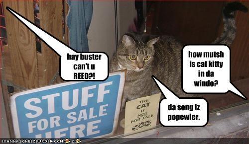 how mutsh is cat kitty in da windo? da song iz popewler. hay buster can't u REED?!