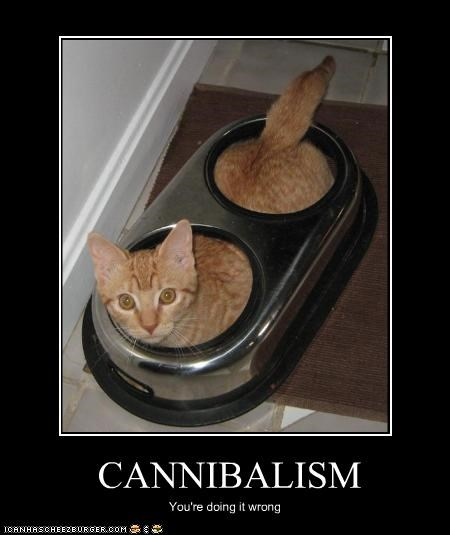 CANNIBALISM You're doing it wrong