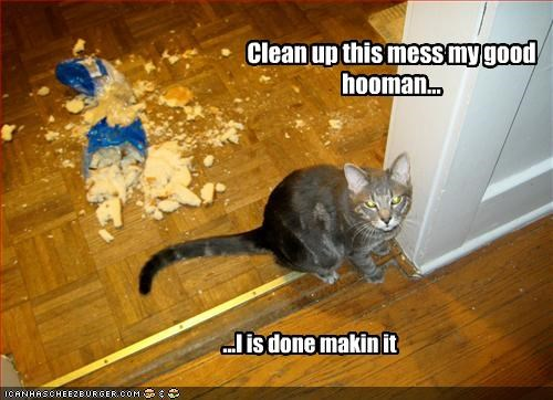 Clean up this mess my good hooman... ...I is done makin it