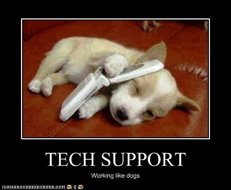 TECH SUPPORT Working like dogs