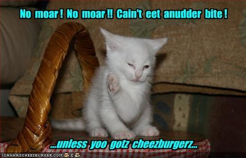 Cheezburger Image 2079089920