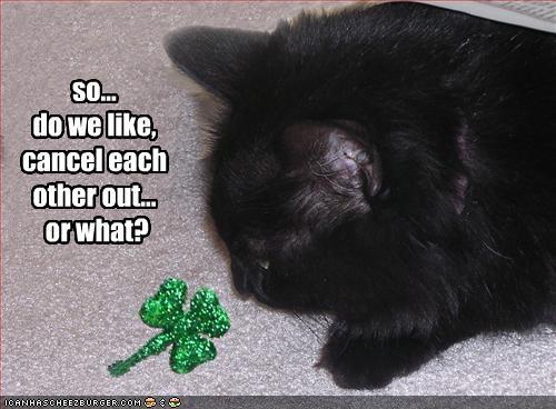 basement cat good luck - 2080247040
