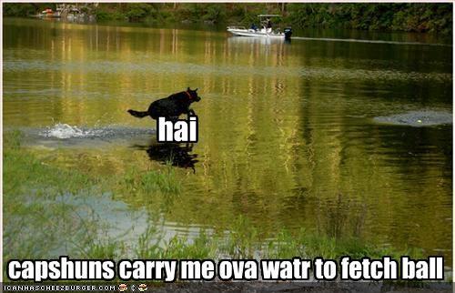 hai capshuns carry me ova watr to fetch ball