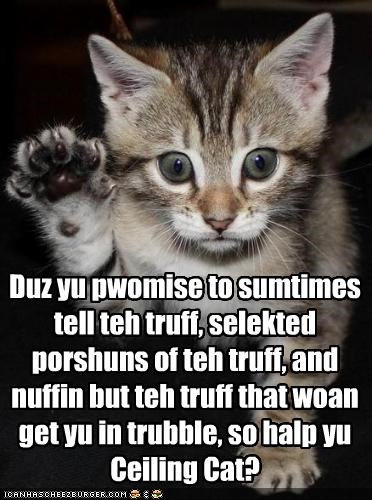 The Kitteh Oath Duz yu pwomise to sumtimes tell teh truff, selekted porshuns of teh truff, and nuffin but teh truff that woan get yu in trubble, so halp yu Ceiling Cat?