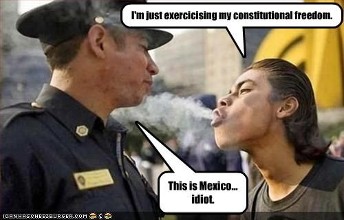 I'm just exercicising my constitutional freedom. This is Mexico... idiot.