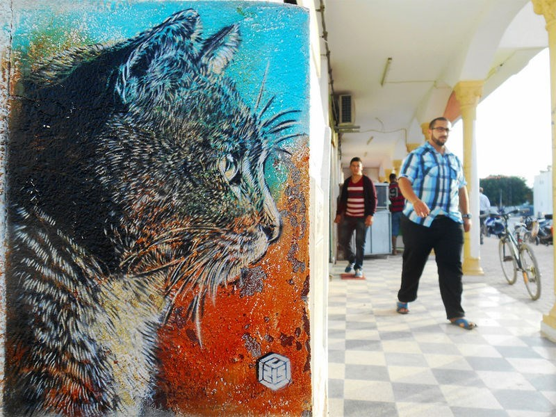 PHOTOS OF STENCILED STREET ART OF CATS AROUND THE WORLD