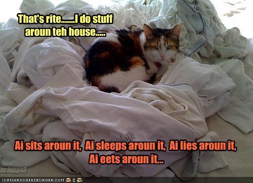 laundry lazy nap work - 2101932800