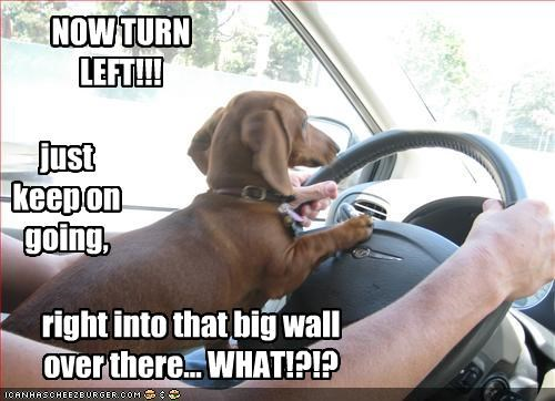 NOW TURN LEFT!!! just keep on going, right into that big wall over there... WHAT!?!?