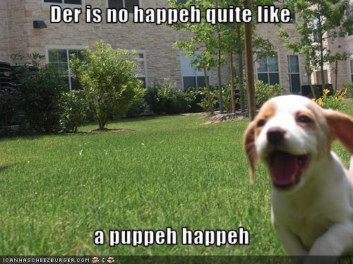 baby beagle happy laugh smile - 2107093760