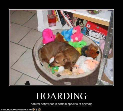 bed,collection,dachshund,hoarding,stuffed animal,toys
