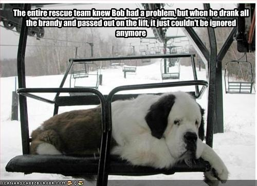 brandy,drunk,rescue,saint bernard,skiing,snow
