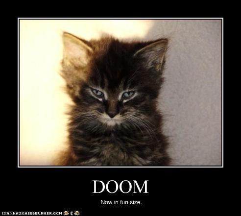 cute doom kitten scary