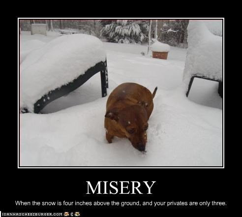 MISERY When the snow is four inches above the ground, and your privates are only three.
