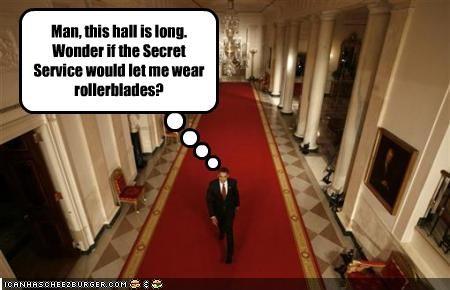 barack obama democrats fun president White house - 2113421056