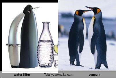 animals penguins water filter - 2114444544