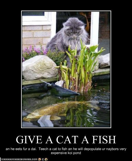 GIVE A CAT A FISH an he eets fur a dai. Teech a cat to fish an he will depopulate ur naybors very expensive koi pond
