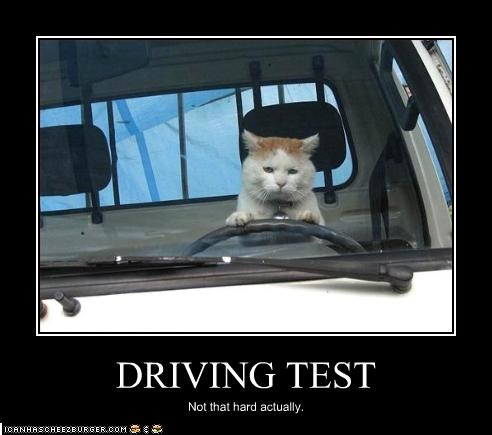Driving Test Cheezburger Funny Memes Funny Pictures