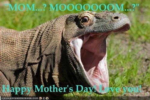 MOM...? MOOOOOOOM...?