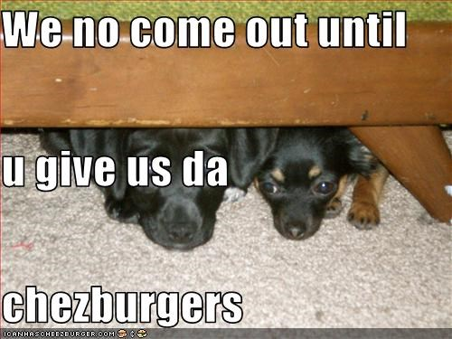 Cheezburger Image 2124181248