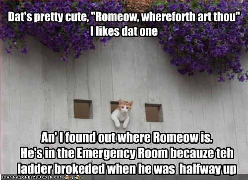 """Dat's pretty cute, """"Romeow, whereforth art thou"""" I likes dat one An' I found out where Romeow is. He's in the Emergency Room becauze teh ladder brokeded when he was halfway up"""