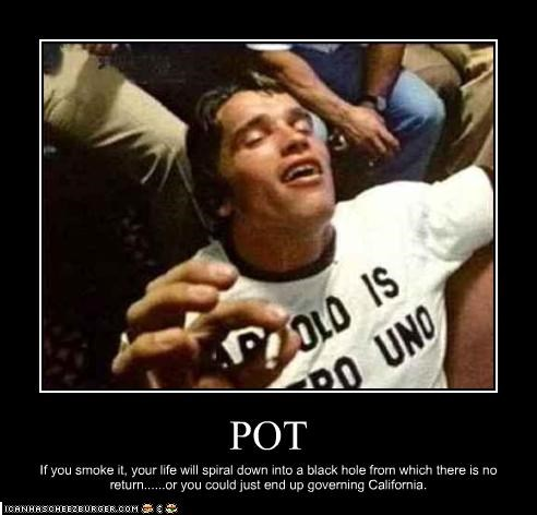 Arnold Schwarzenegger california Governor marijuana pot