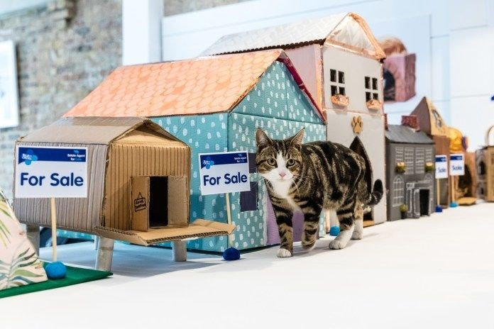 the Blue Cross UK launches real estate agency for cats in order to help them find homes