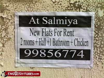 apartments,bathroom,chicken,flats,g rated,rent