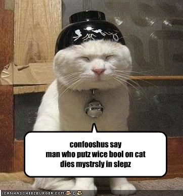 Cleverness Here confooshus say man who putz wice bool on cat dies mystrsly in slepz