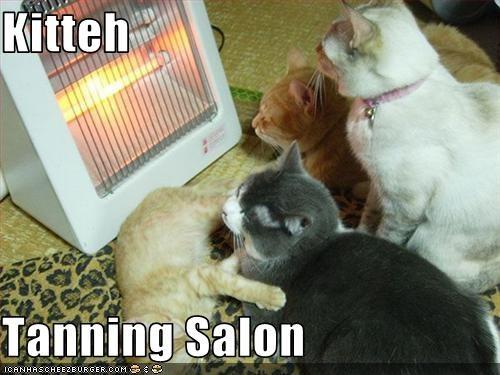 heater tanning warm - 2135476992