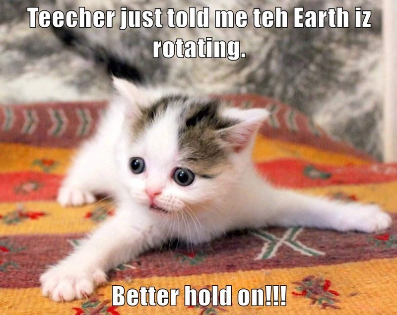 Funny meme of a cat saying to hold on because teacher said Earth is rotating - cover image for Top Ten Funny Memes of The Week #3