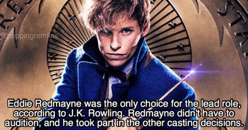 17 Facts From 'Fantastic Beasts and Where to Find Them'