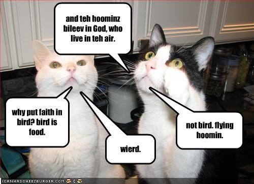 and teh hoominz bileev in God, who live in teh air. why put faith in bird? bird is food. not bird. flying hoomin. wierd.