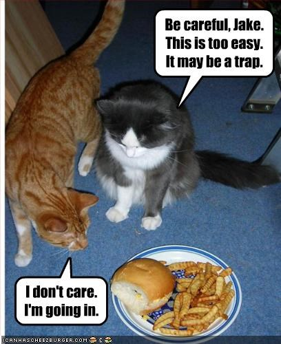 cheezburger,fud,nom nom nom,trap,want