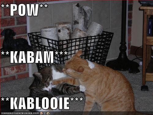 Pow Kabam Kablooie Cheezburger Funny Memes Funny