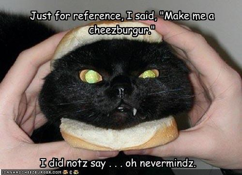 """Just for reference, I said, """"Make me a cheezburgur."""" I did notz say . . . oh nevermindz."""
